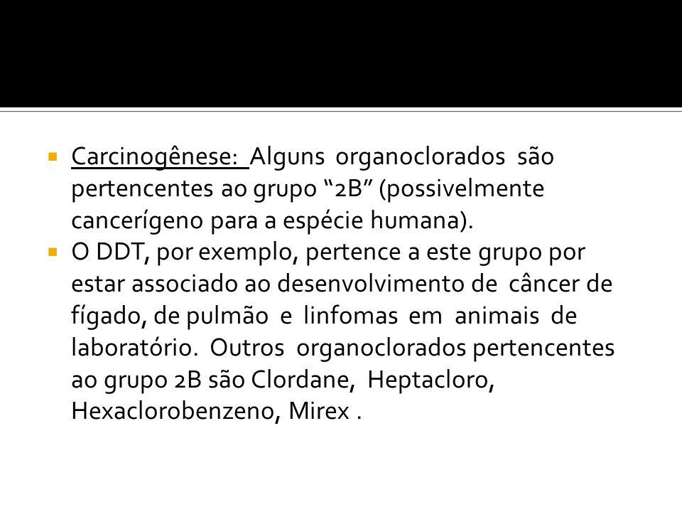 Carcinogênese: Alguns organoclorados são pertencentes ao grupo 2B (possivelmente cancerígeno para a espécie humana).