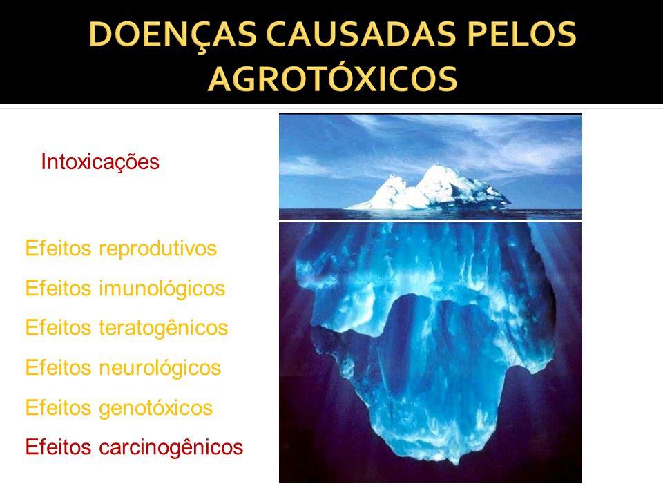 Intoxicações Efeitos reprodutivos. Efeitos imunológicos. Efeitos teratogênicos. Efeitos neurológicos.