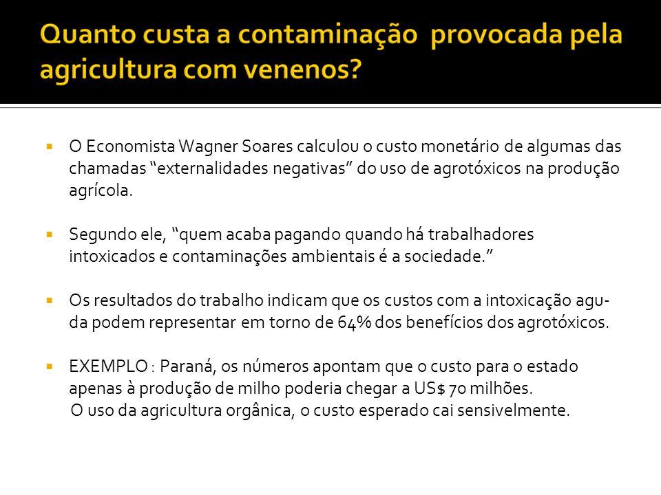 O Economista Wagner Soares calculou o custo monetário de algumas das chamadas externalidades negativas do uso de agrotóxicos na produção agrícola.