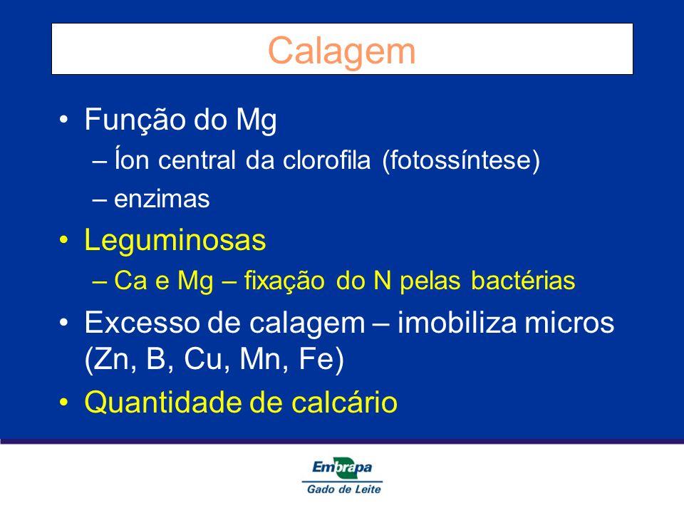 Calagem Função do Mg Leguminosas