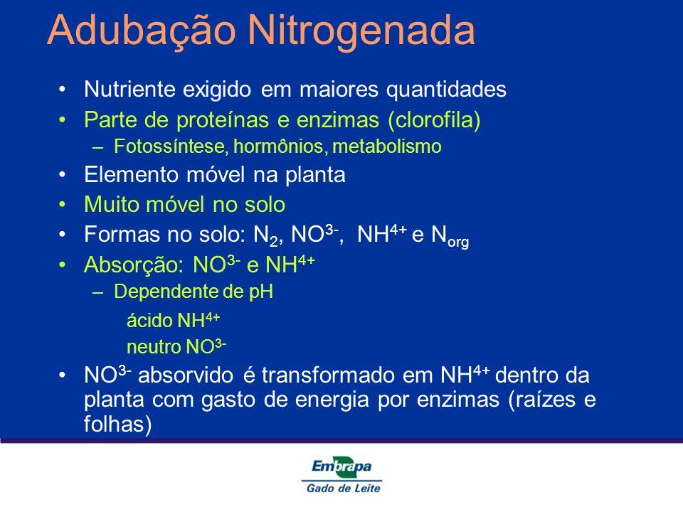 Adubação Nitrogenada Nutriente exigido em maiores quantidades