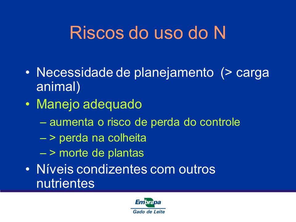 Riscos do uso do N Necessidade de planejamento (> carga animal)