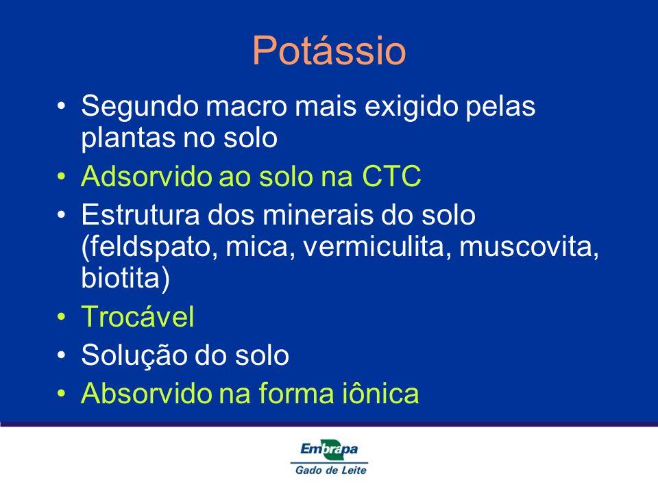 Potássio Segundo macro mais exigido pelas plantas no solo