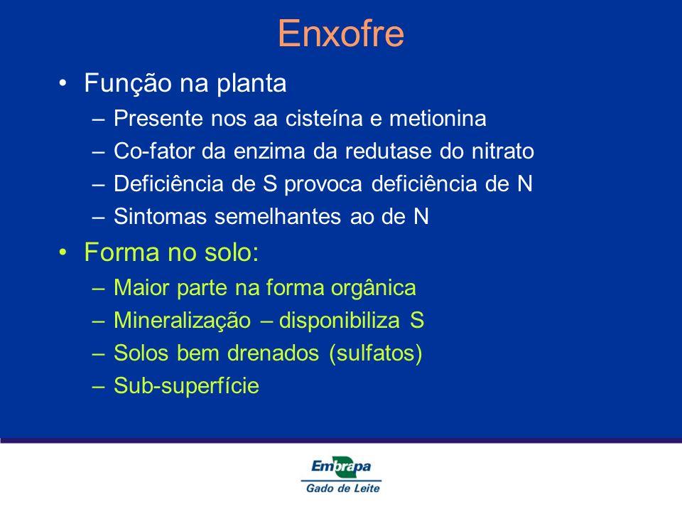 Enxofre Função na planta Forma no solo: