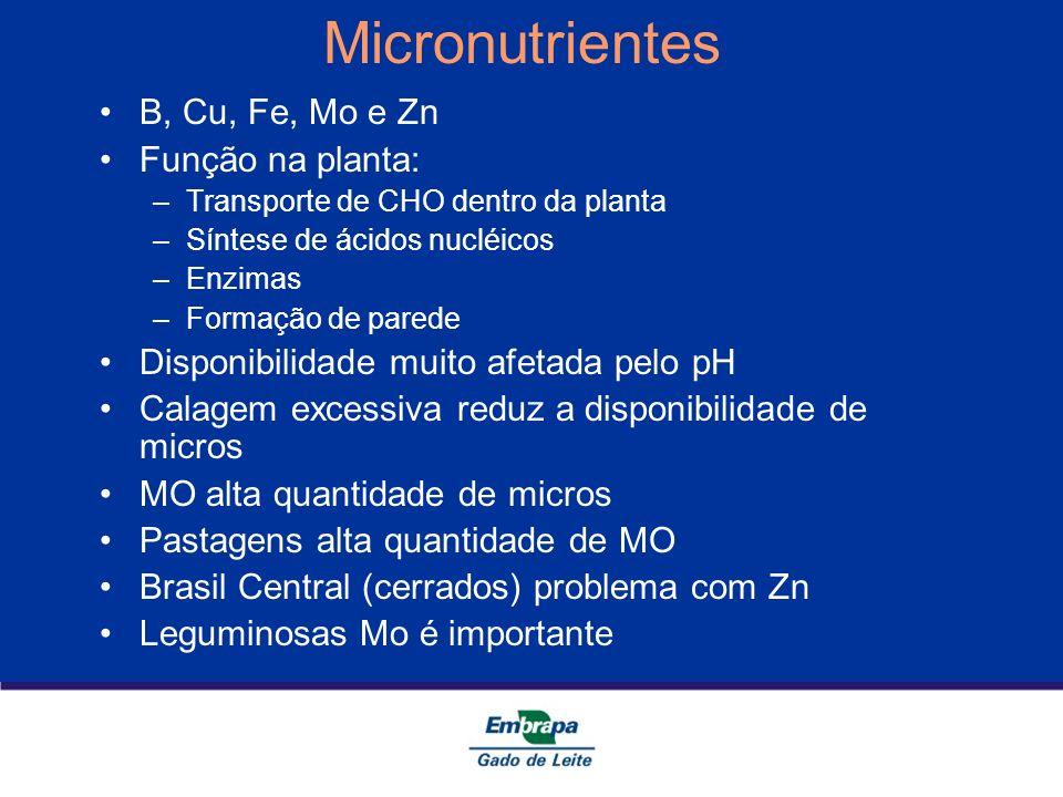 Micronutrientes B, Cu, Fe, Mo e Zn Função na planta: