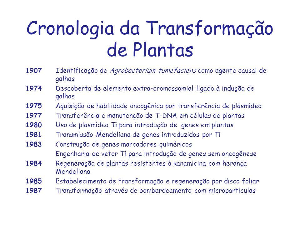 Cronologia da Transformação de Plantas