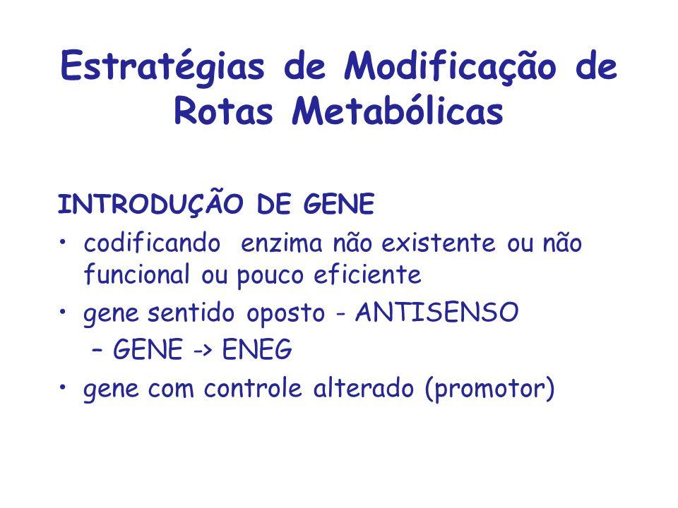 Estratégias de Modificação de Rotas Metabólicas