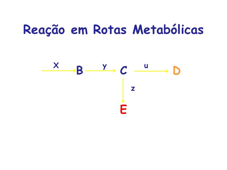 Reação em Rotas Metabólicas