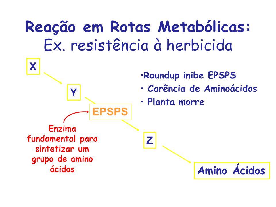 Reação em Rotas Metabólicas: Ex. resistência à herbicida
