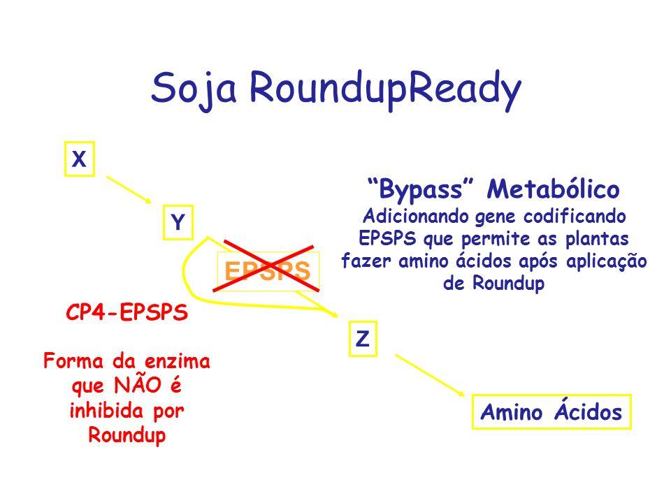 Forma da enzima que NÃO é inhibida por Roundup
