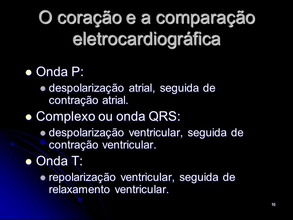 O coração e a comparação eletrocardiográfica