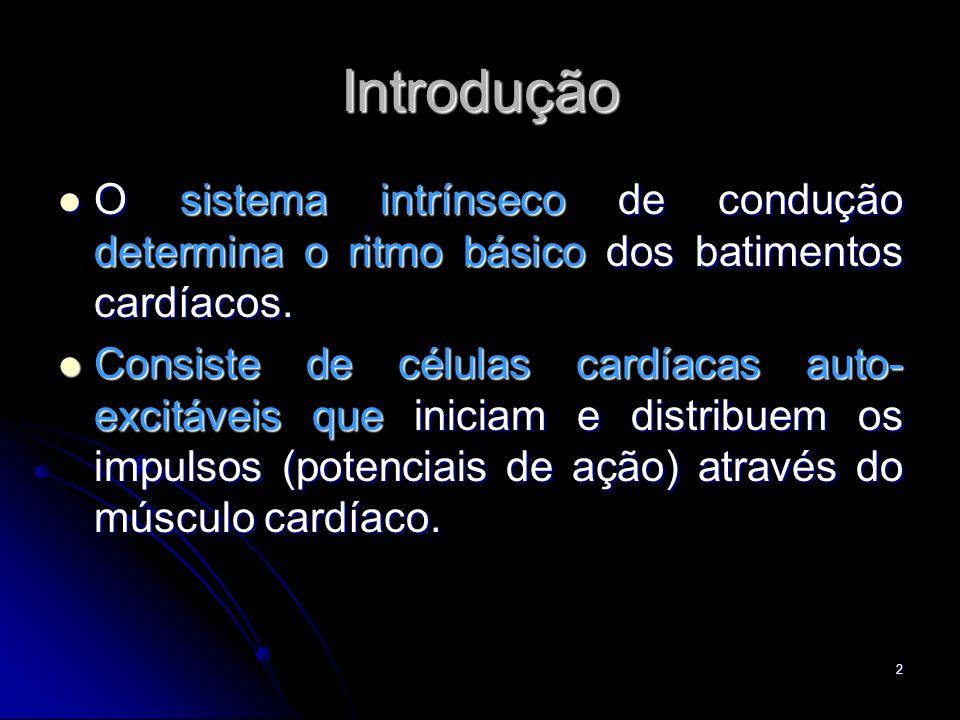 Introdução O sistema intrínseco de condução determina o ritmo básico dos batimentos cardíacos.