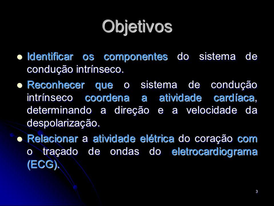Objetivos Identificar os componentes do sistema de condução intrínseco.