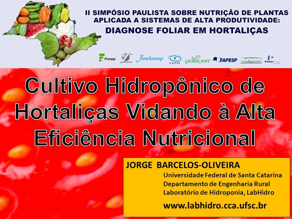 Cultivo Hidropônico de Hortaliças Vidando à Alta Eficiência Nutricional