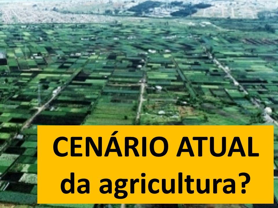 CENÁRIO ATUAL da agricultura