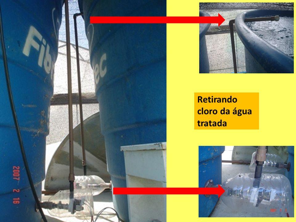 Retirando cloro da água tratada