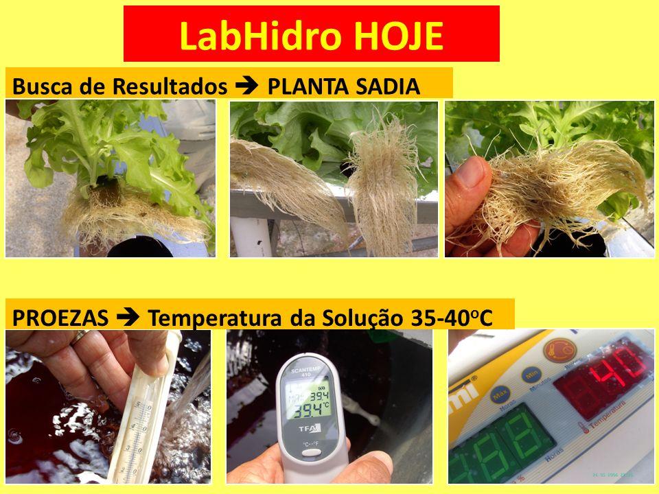 LabHidro HOJE Busca de Resultados  PLANTA SADIA
