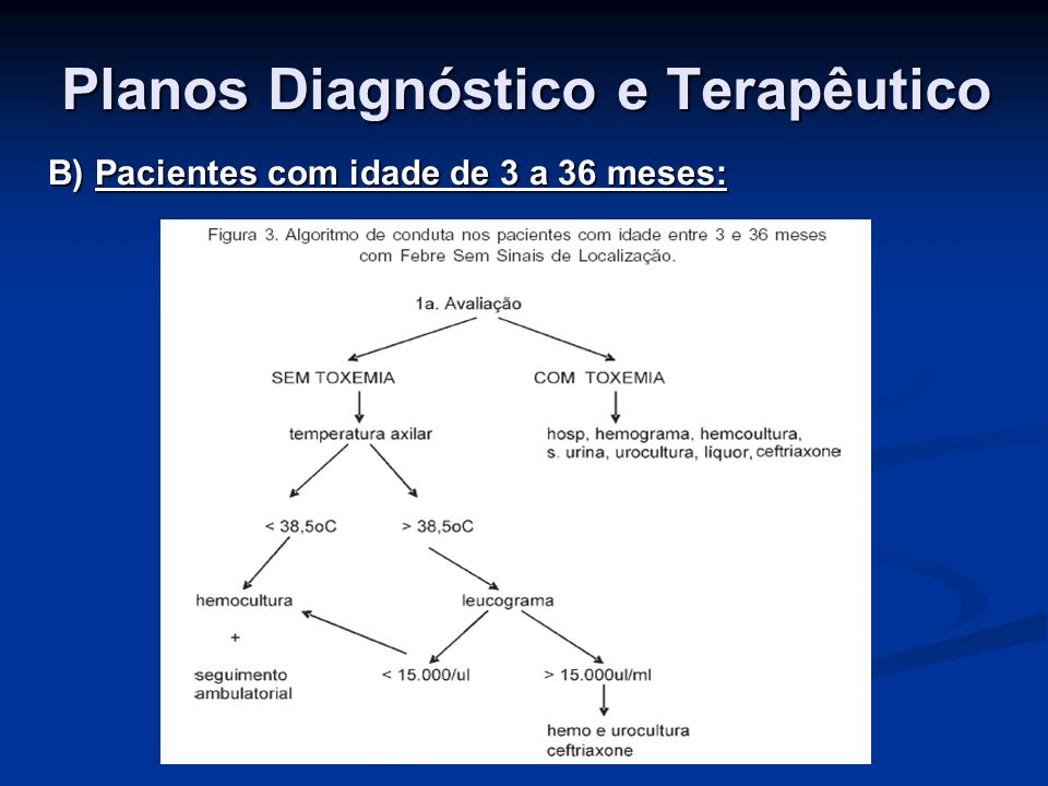 Planos Diagnóstico e Terapêutico