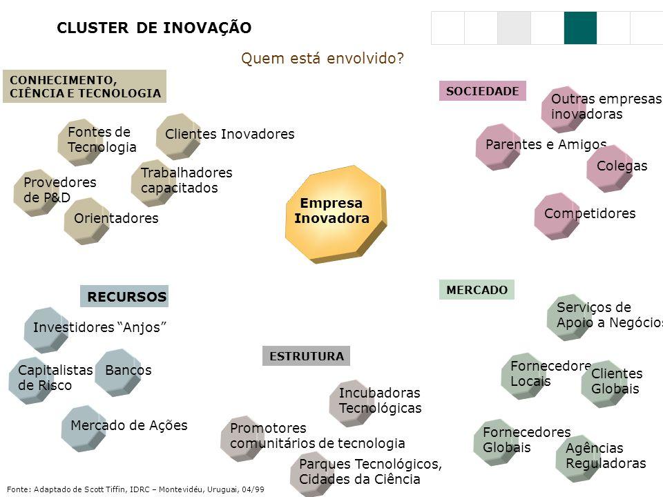 CLUSTER DE INOVAÇÃO Quem está envolvido Outras empresas inovadoras