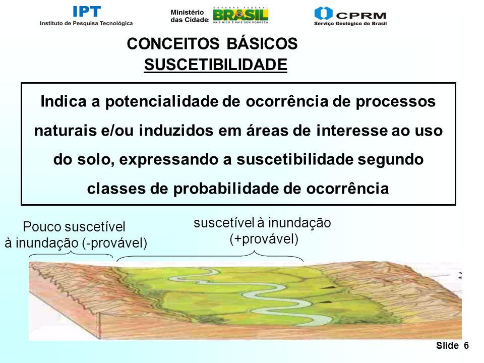CONCEITOS BÁSICOS SUSCETIBILIDADE