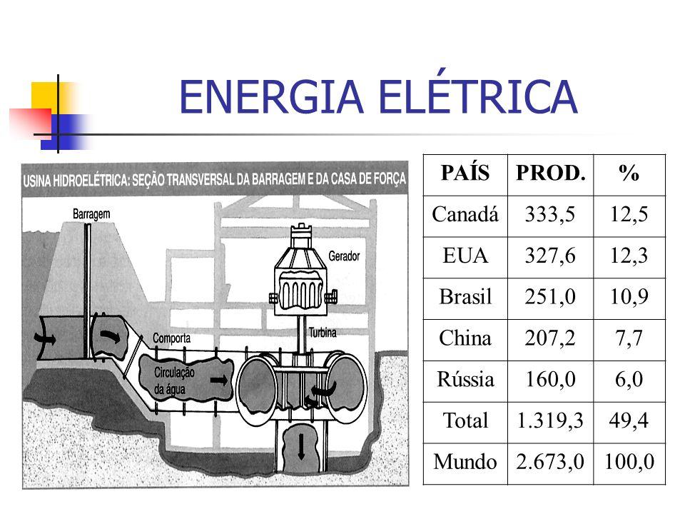 ENERGIA ELÉTRICA PAÍS PROD. % Canadá 333,5 12,5 EUA 327,6 12,3 Brasil
