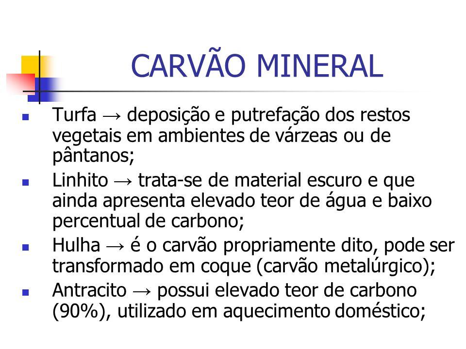 CARVÃO MINERAL Turfa → deposição e putrefação dos restos vegetais em ambientes de várzeas ou de pântanos;