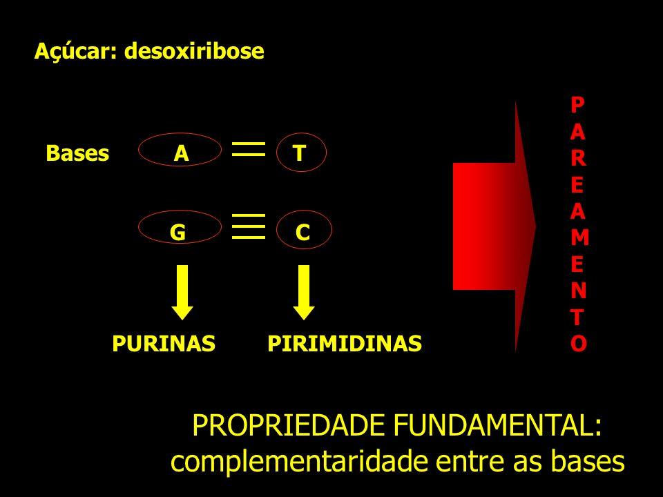 PROPRIEDADE FUNDAMENTAL: complementaridade entre as bases