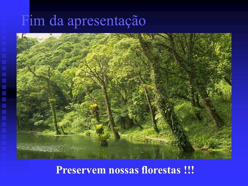Preservem nossas florestas !!!