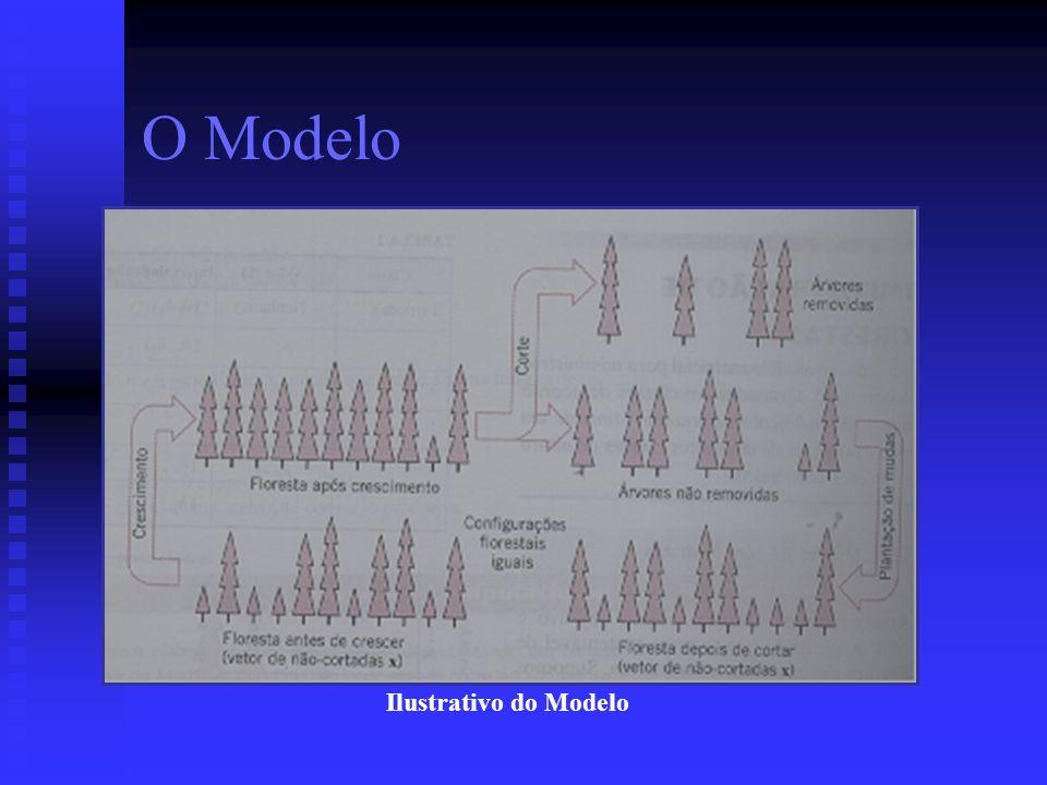 O Modelo Ilustrativo do Modelo