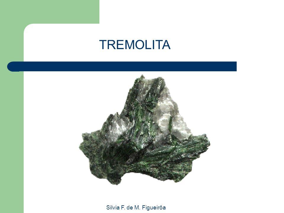 TREMOLITA Silvia F. de M. Figueirôa