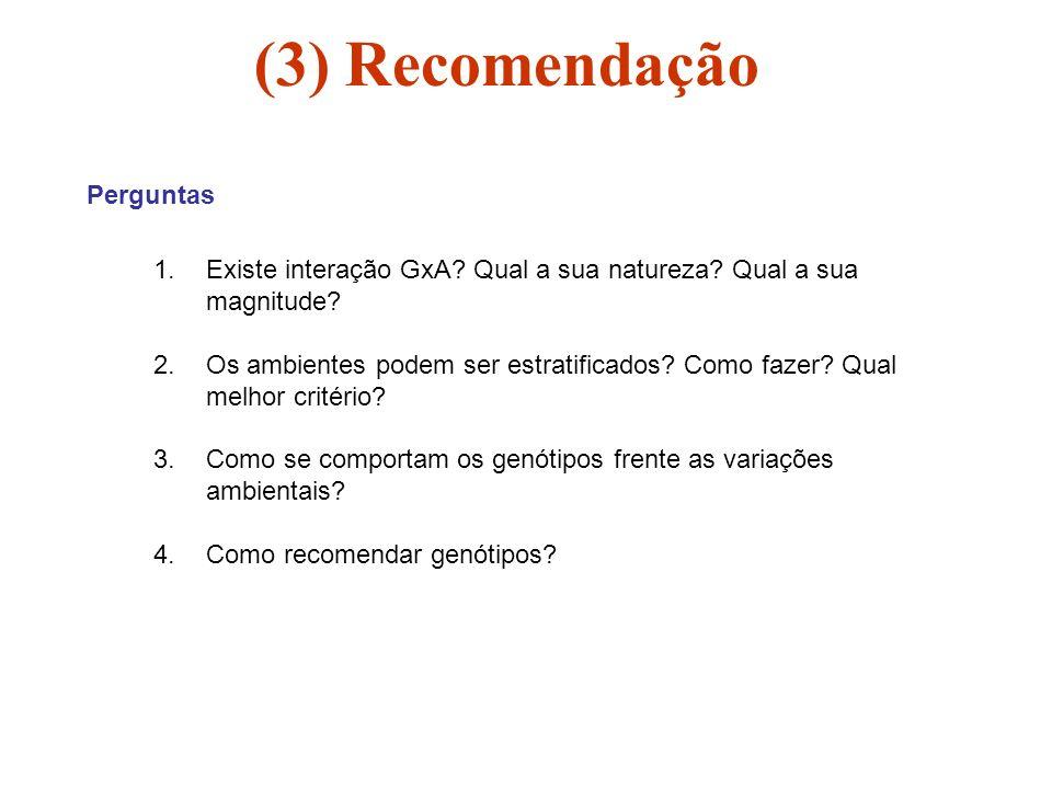 (3) Recomendação Perguntas