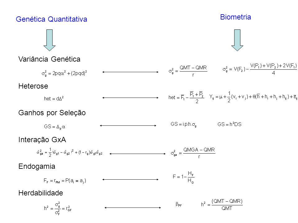Biometria Genética Quantitativa. Variância Genética. Heterose. Ganhos por Seleção. Interação GxA.