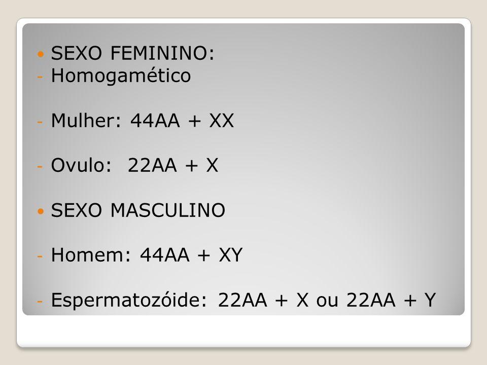 SEXO FEMININO: Homogamético. Mulher: 44AA + XX. Ovulo: 22AA + X. SEXO MASCULINO. Homem: 44AA + XY.