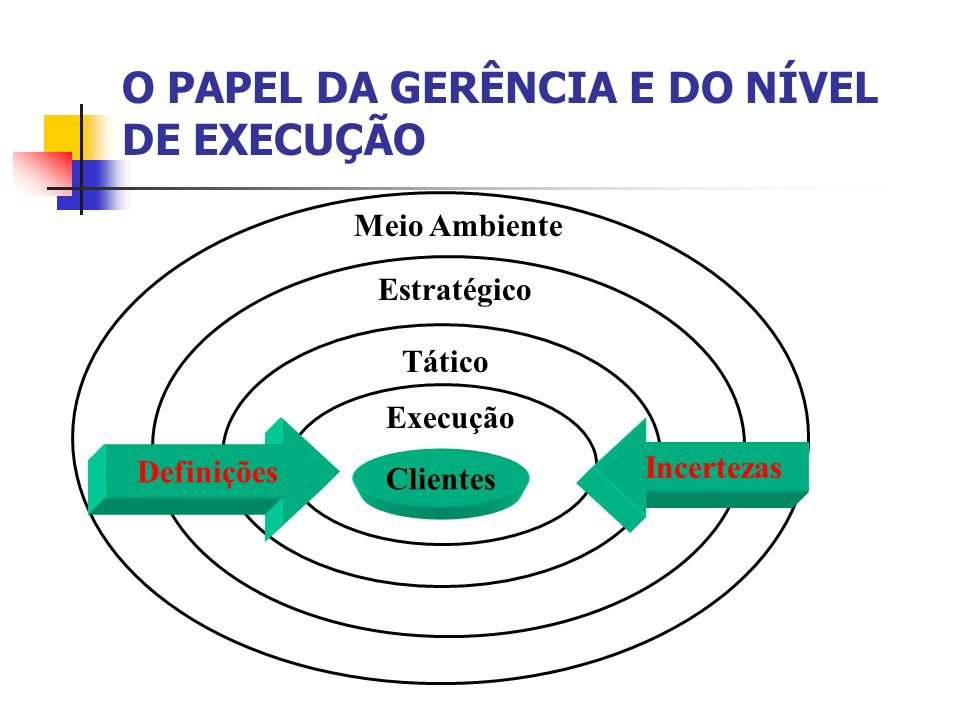 O PAPEL DA GERÊNCIA E DO NÍVEL DE EXECUÇÃO
