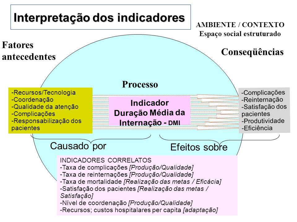 Interpretação dos indicadores