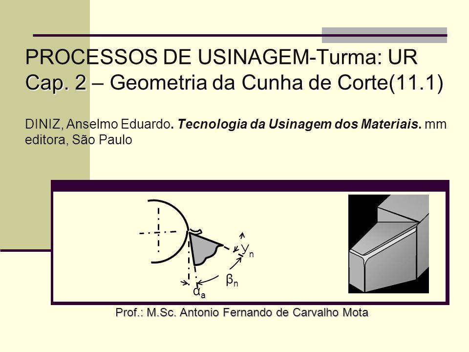 Prof.: M.Sc. Antonio Fernando de Carvalho Mota