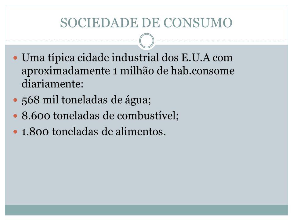 SOCIEDADE DE CONSUMO Uma típica cidade industrial dos E.U.A com aproximadamente 1 milhão de hab.consome diariamente: