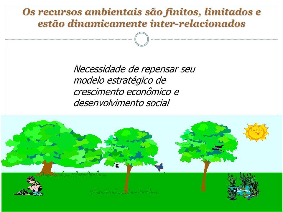 Os recursos ambientais são finitos, limitados e estão dinamicamente inter-relacionados