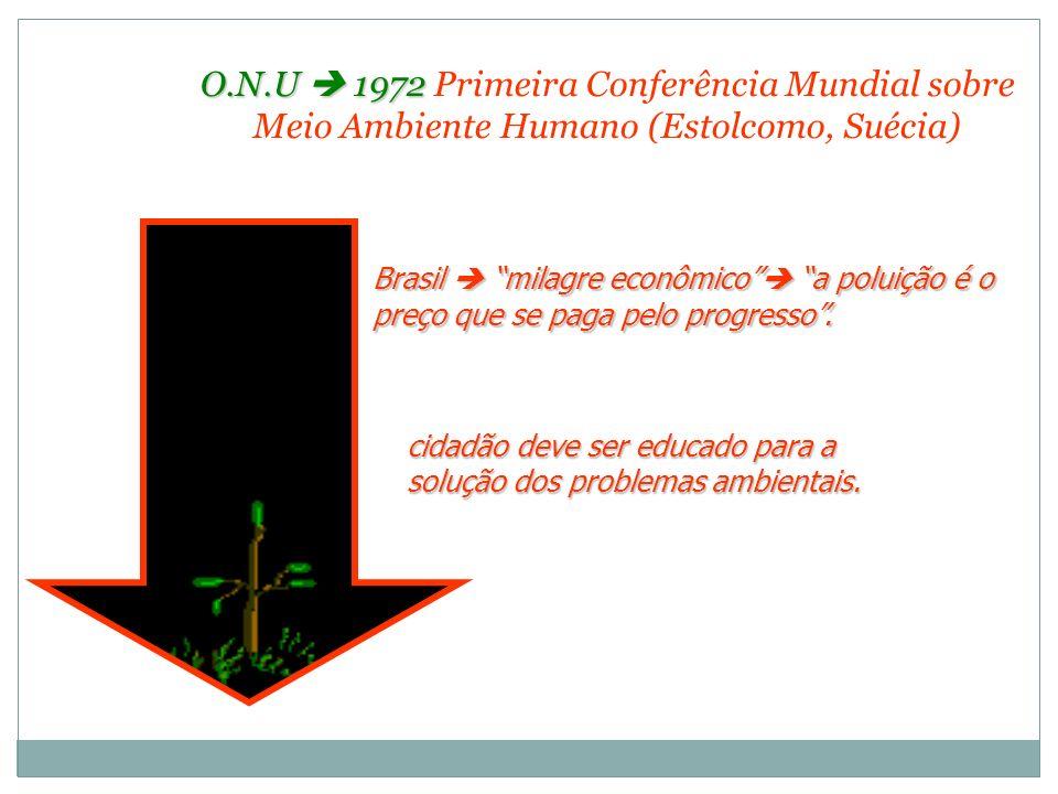 O.N.U  1972 Primeira Conferência Mundial sobre Meio Ambiente Humano (Estolcomo, Suécia)