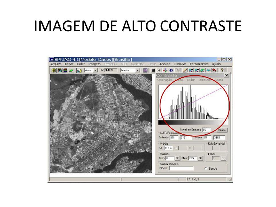 IMAGEM DE ALTO CONTRASTE