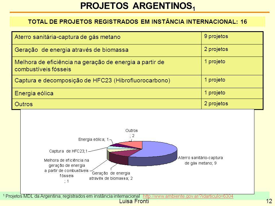TOTAL DE PROJETOS REGISTRADOS EM INSTÂNCIA INTERNACIONAL: 16