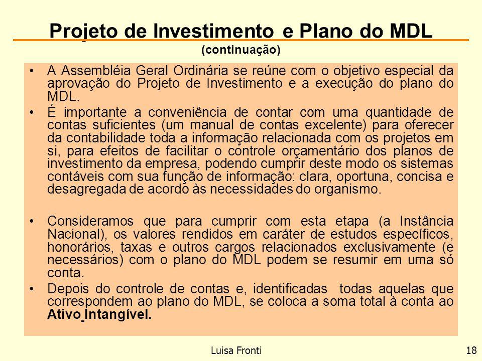 Projeto de Investimento e Plano do MDL (continuação)