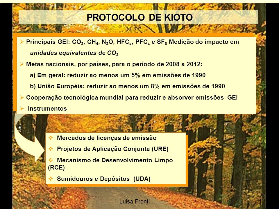 PROTOCOLO DE KIOTO Principais GEI: CO2, CH4, N2O, HFCs, PFCs e SF6 Medição do impacto em. unidades equivalentes de CO2.