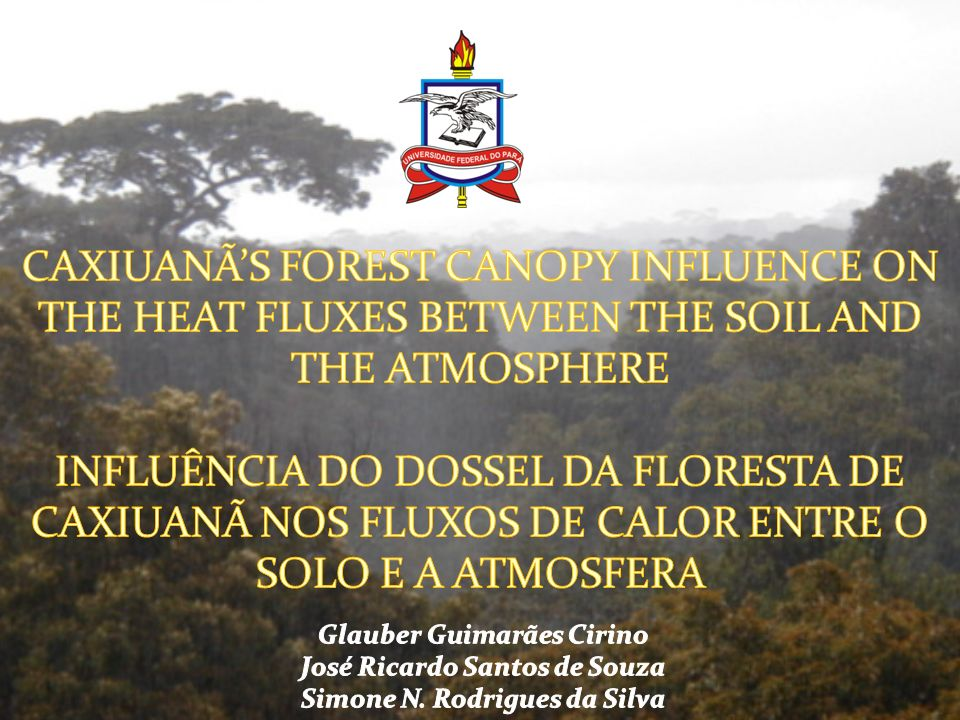 CAXIUANÃ'S FOREST CANOPY INFLUENCE ON THE HEAT FLUXES BETWEEN THE SOIL AND THE ATMOSPHERE