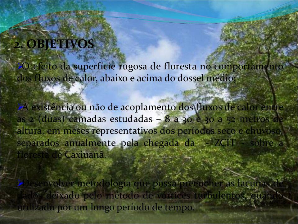 2. OBJETIVOS O efeito da superfície rugosa de floresta no comportamento dos fluxos de calor, abaixo e acima do dossel médio;