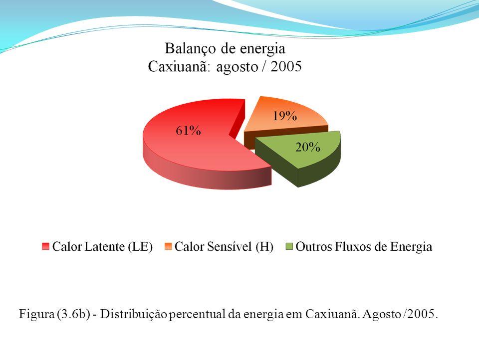 Figura (3. 6b) - Distribuição percentual da energia em Caxiuanã