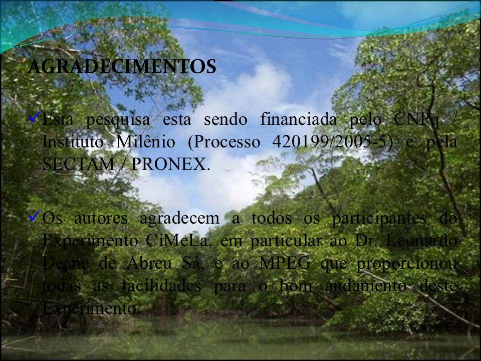 AGRADECIMENTOS Esta pesquisa esta sendo financiada pelo CNPq / Instituto Milênio (Processo 420199/2005-5) e pela SECTAM / PRONEX.