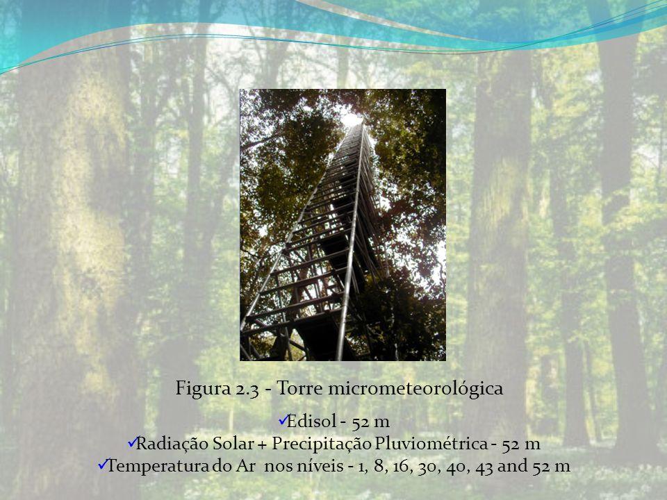 Figura 2.3 - Torre micrometeorológica