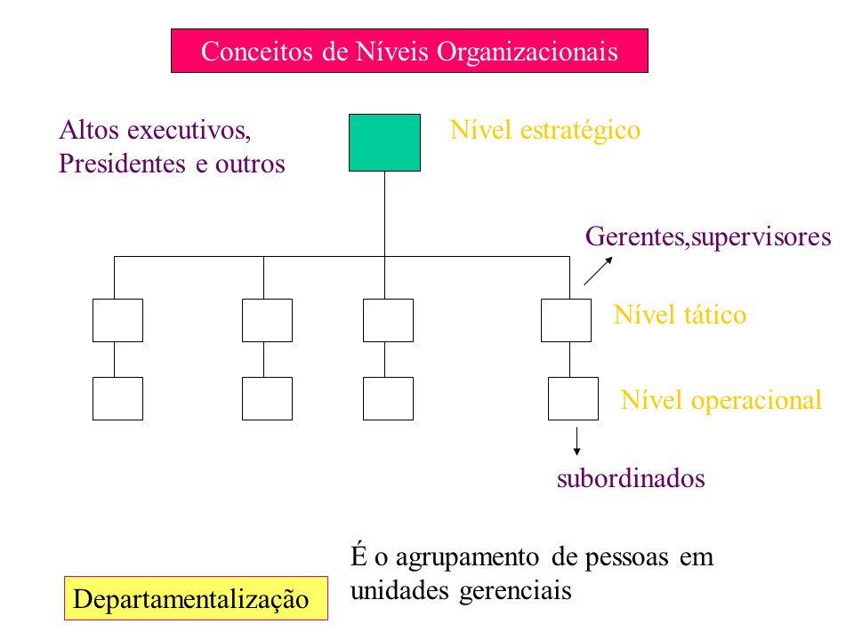 Conceitos de Níveis Organizacionais