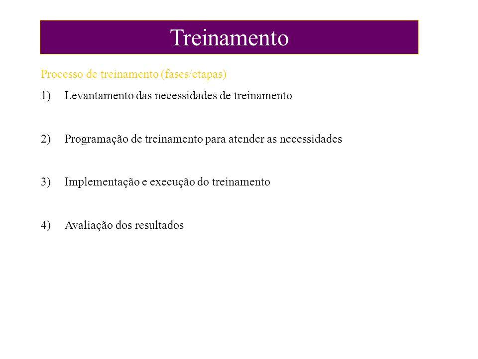 Treinamento Processo de treinamento (fases/etapas)
